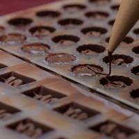 Dégustation de chocolat artisanal
